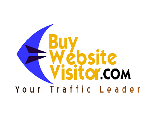 BuyWebsiteVisitor.com Case Study
